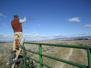FWP biologist Nick DeCesare uses an antenna to locate a moose with a radio collar.